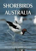 Shorebirds of Australia